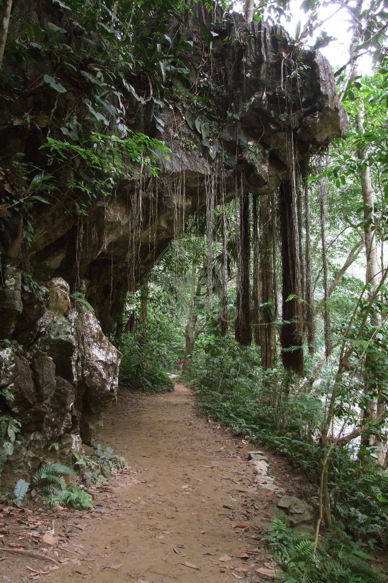 Caminatas inolvidables - Hotel & Restaurante Parador del gitano - Nápoles - Doradal - Rio claro