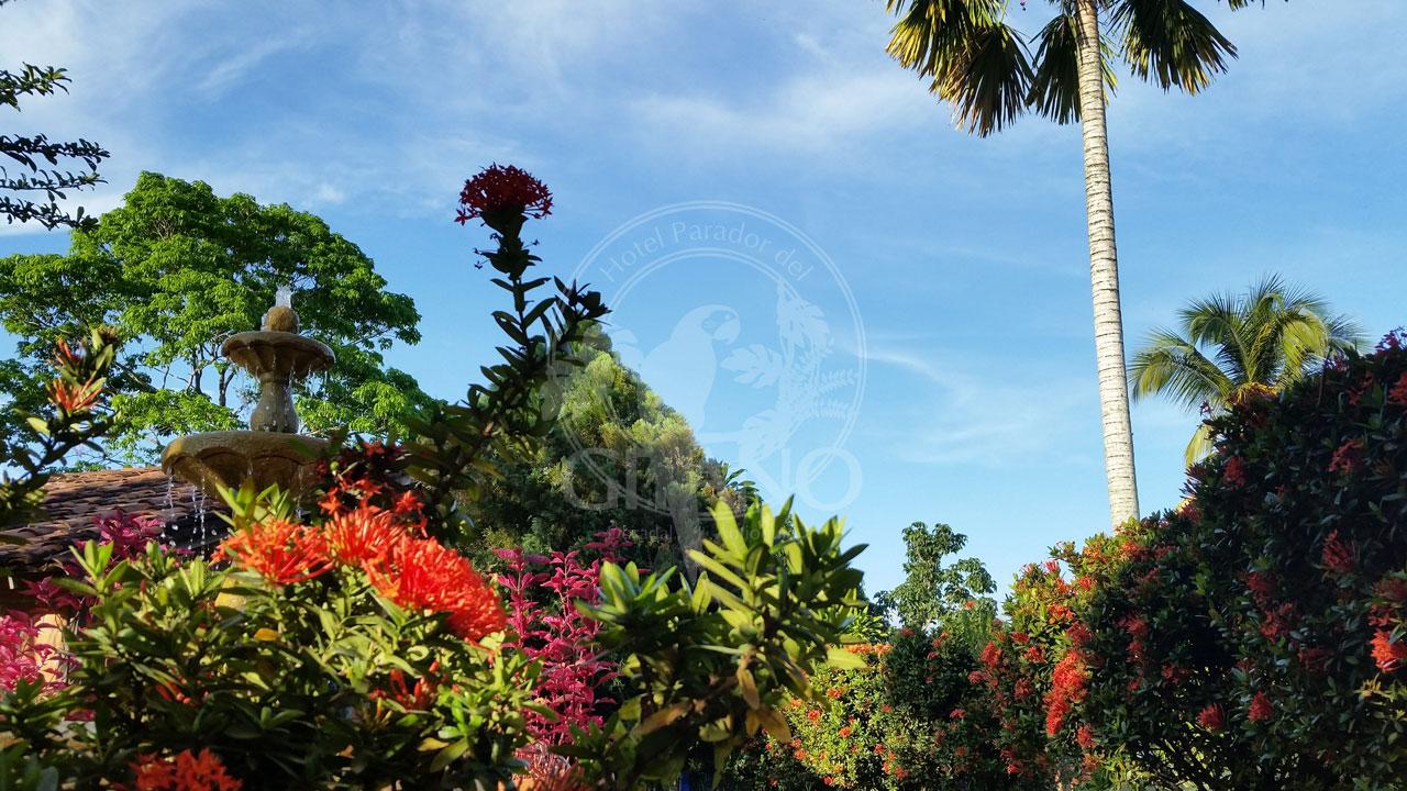 Días soleados, rodeados de naturaleza - Hotel & Restaurante Parador del gitano - Nápoles - Doradal - Rio claro