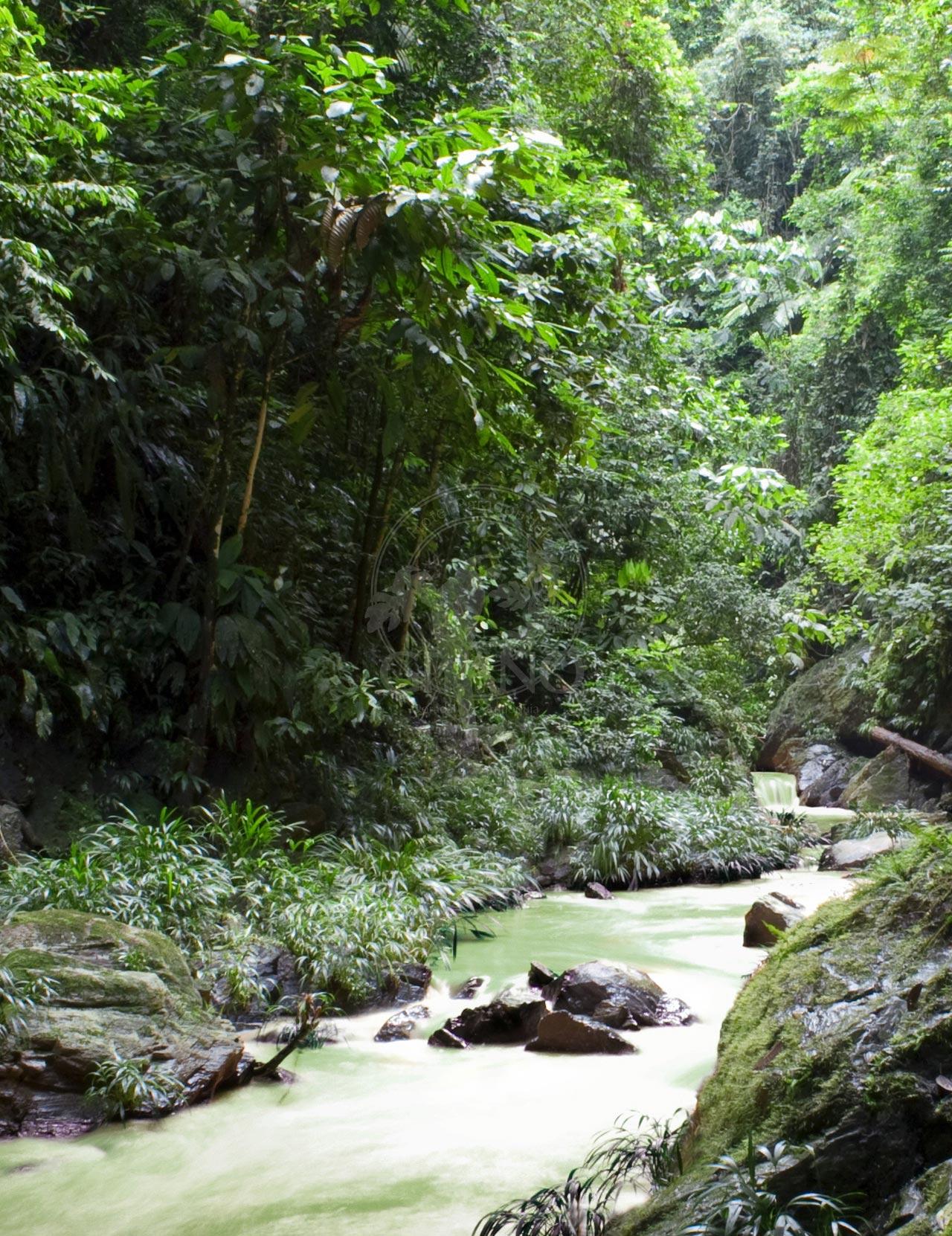 Expediciones inéditas - Hotel & Restaurante Parador del Gitano - Nápoles - Doradal - Rio claro