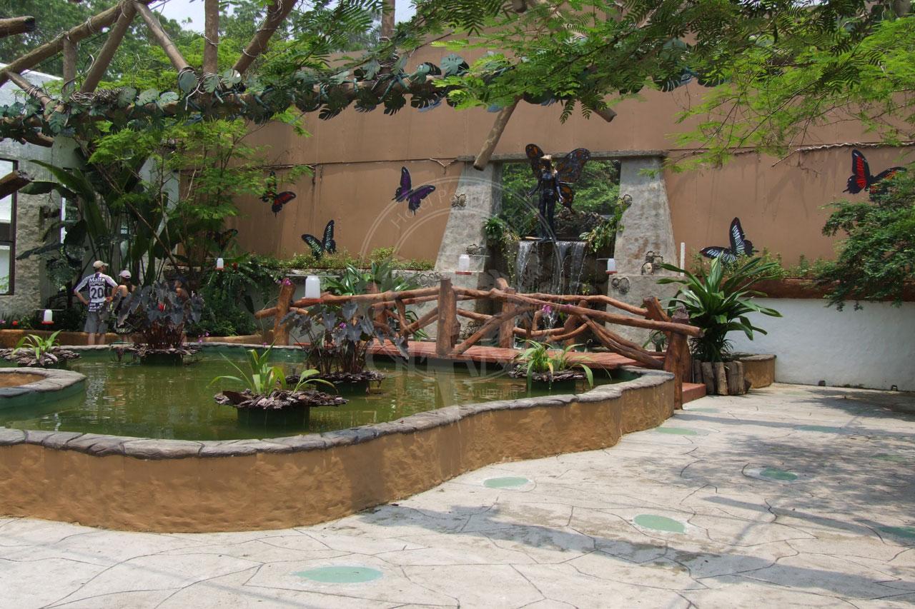 Contempla jardines, fuentes y mariposas - Parque Temático Hacienda Nápoles - Hotel & Restaurante Parador del Gitano - Nápoles - Doradal - Rio claro