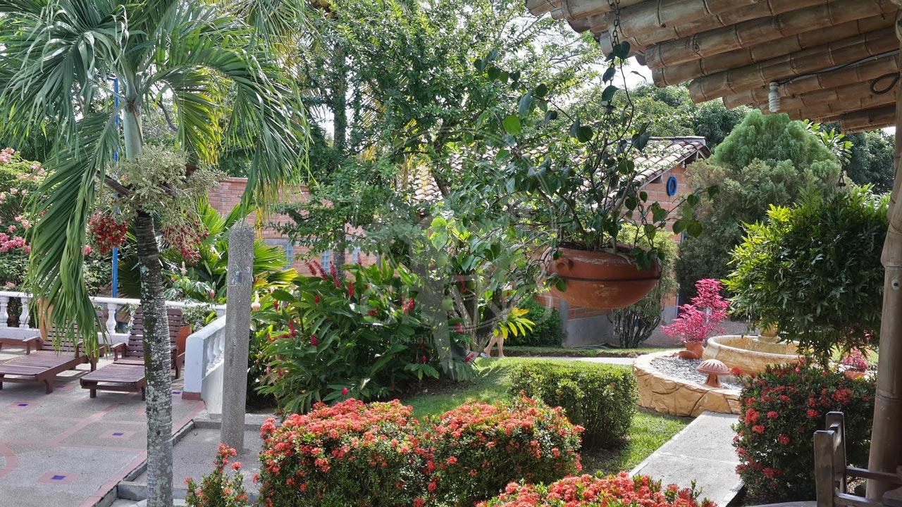 Un descanzo placentero entre bosque y fauna - Hotel & Restaurante Parador del Gitano - Nápoles - Doradal - Rio claro