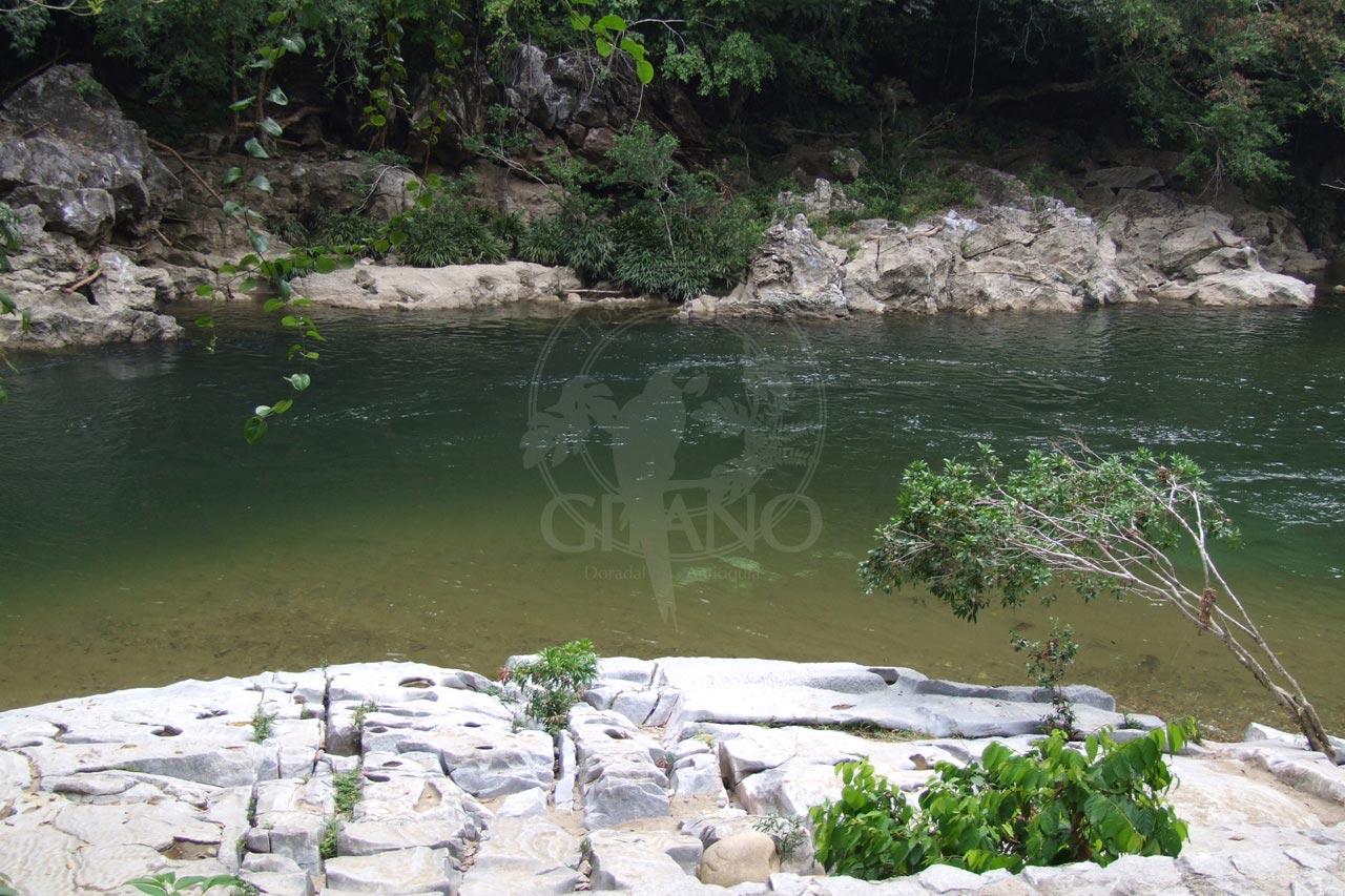 Rio claro - Hotel & Restaurante Parador del Gitano - Nápoles - Doradal - Rio claro