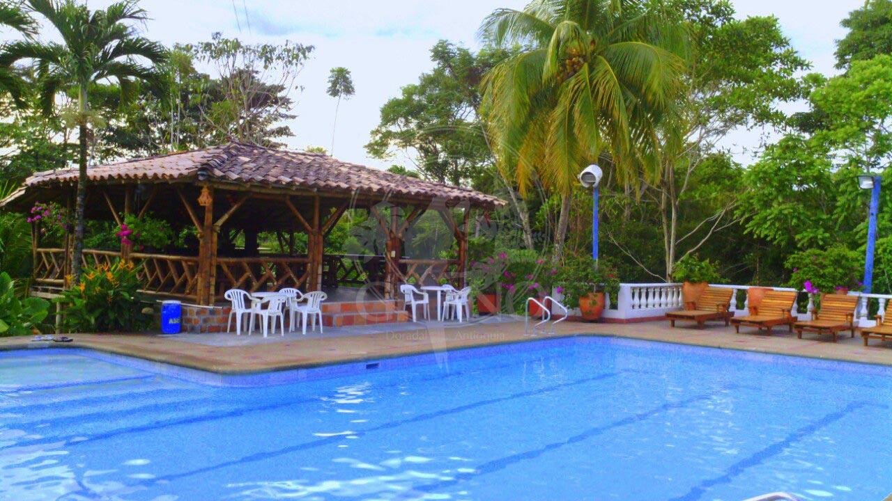 Un lugar para el descanso, relajarse, asolearse - Hotel & Restaurante Parador del Gitano - Nápoles - Doradal - Rio claro